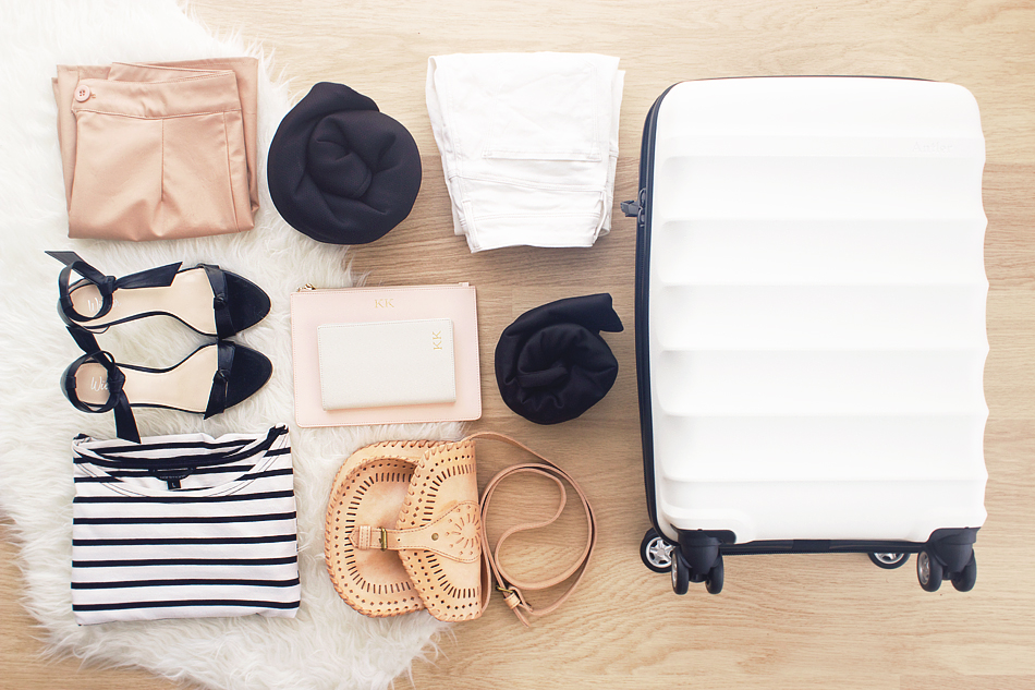 how to pack travel jetsetter style via lion in the wild