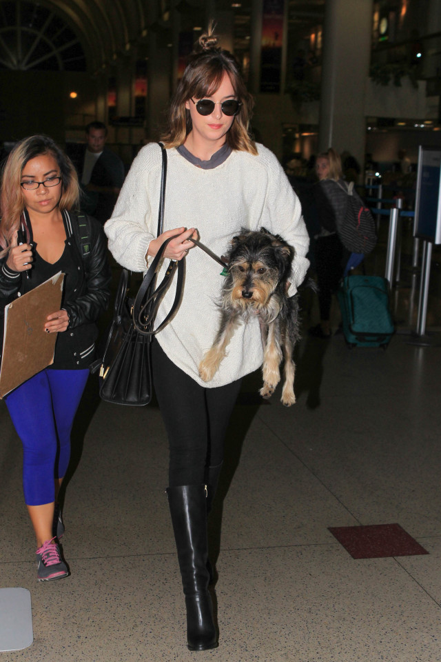 dakota johnson, airport outfit, what to wear this weekend, what to wear to the airport, black leggings, black riding boots, oversized mens sweater
