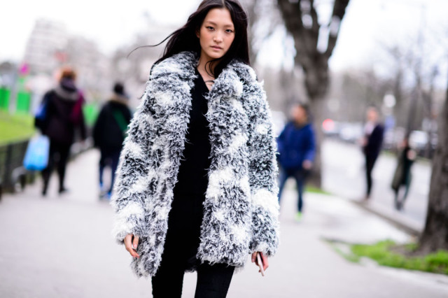 fur coat-colored fur-printed fur-all black-pcfw-hbz